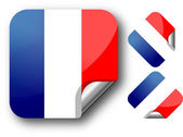 Sticker with France flag — Vector de stock
