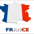 Stock Vector: France territory with flag texture.