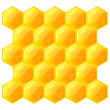 Honeycomb, isolated on the white. Vector. EPS8 — Векторная иллюстрация
