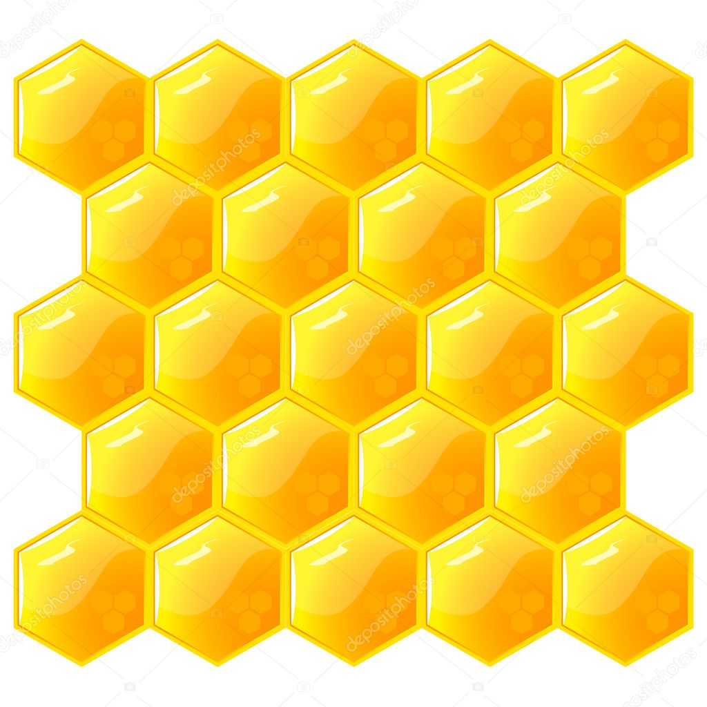 Honeycomb, isolated on the white. Vector. EPS8 — Stock Vector #3756274