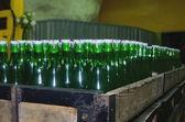 Wine bottles — Stock Photo