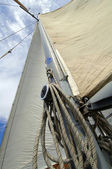 White sail — Stockfoto