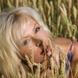 Blonde sitting on a field of wheat — Stock fotografie