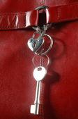 Un trousseau de clés métalliques — Photo
