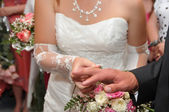 Hands of newlyweds — Foto Stock