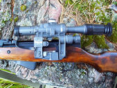 Optical sight on carbine — Stock fotografie
