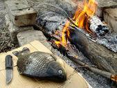 Fishing lunch — Stock Photo