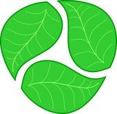 Three green leaves — Stock Vector