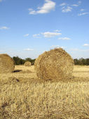 Golden straw bales — Stock Photo