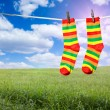 Socks on a rope - Stock Photo