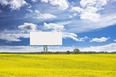 Billboard in rapeseed field — Stock Photo