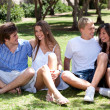Стоковое фото: Group of Romantic couples