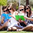 Young couples relaxing in park and reading books — Stok fotoğraf