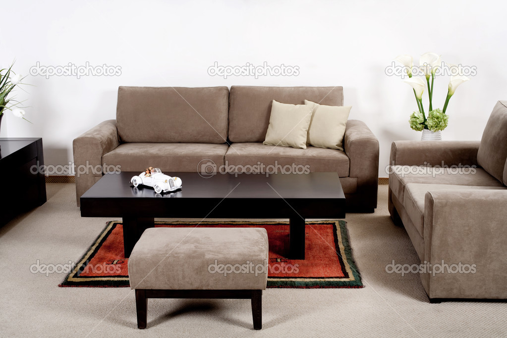 Neat and clean modern living room with classic couch — Stock Photo #3710609