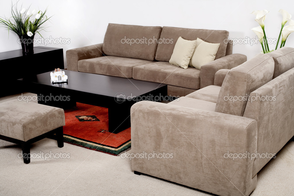 Classic furniture in a modern living room — Stock Photo #3710631