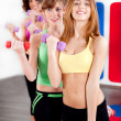Ladies working out with dumbbells — Stockfoto