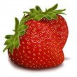 strawberries — Stockfoto