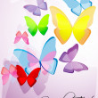 Colorful butterflies — Stock Photo