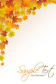 Autumn card — Stock Photo