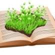 Grass on open book — Stock Photo #4263805