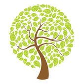 Natural tree — Stock Photo