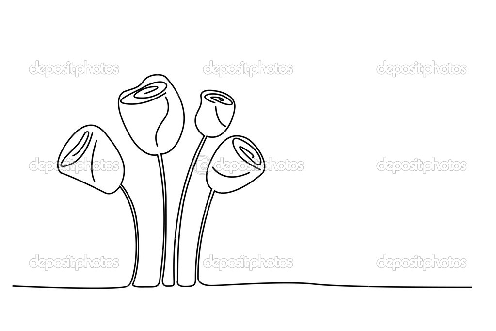 Illustration of sketchy rose flowers on white background — Stock Photo #4525745