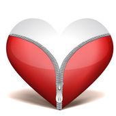 Unzipped heart — Stock Photo