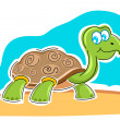 Happy tortoise — Stock Photo