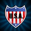 Usa shield - Stock Photo