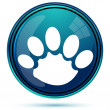 Animal paw — Stock Photo