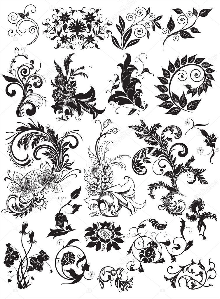 Floral elements for design  — Vettoriali Stock  #3396182