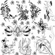 Vettoriale Stock : Floral elements for design