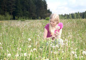 Girl collects in the field dandelions spring afternoon — Stock Photo