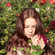 The girl takes hands a flower — Stock Photo
