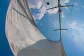 Sail and mast — Stock Photo
