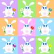 Cute rabbits — Stock Photo
