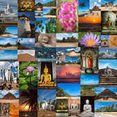 Collage of Sri Lanka images — Stok fotoğraf