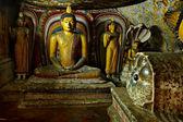 ダンブッラ岩寺の仏像のイメージを古代の洞窟、スリランカ — ストック写真