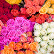 Giant Roses Bouquet — Stock Photo #2998662