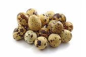 Quail mottled fresh small eggs on the white — Stock Photo