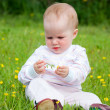 Stock Photo: Little one on meadow considers flower
