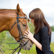 Royalty-Free Stock Photo: Girl and her handsome horse.Friendship