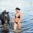 Girl bathe horse in a river. — Stock Photo