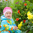 Baby considers flower — Stock Photo