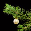 Christmas tree ornaments on dark — Stock Photo #2869559