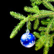 Christmas bauble on background tree — Stock Photo