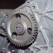 View of gears from  mechanism - Stock Photo