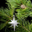 Cristmas star in frame branches — Stock Photo