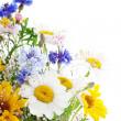 Fresh spring bouquet — Stock Photo