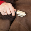 Cleaning a sheepskin with whisk broom - Stock Photo
